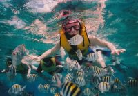 Snorkeling For Fun And Fitness
