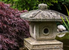 Feng Shui Health Tips for General Health and Good Emotional State